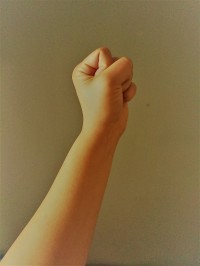 pic fist